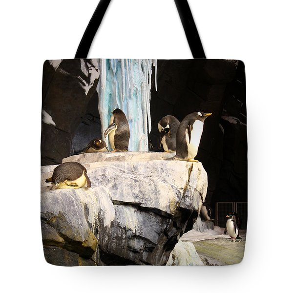 Seaworld Penguins Tote Bag