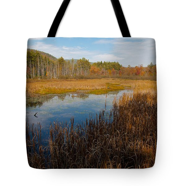Secluded Adirondack Pond Tote Bag by David Patterson