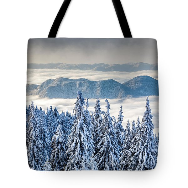 Second Level Tote Bag by Evgeni Dinev