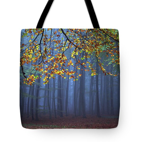 Seconds Before The Light Went Out Tote Bag
