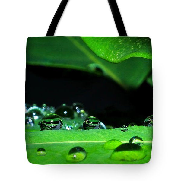 Secret Windows..... Tote Bag