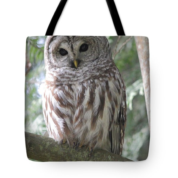 Security Cam Tote Bag
