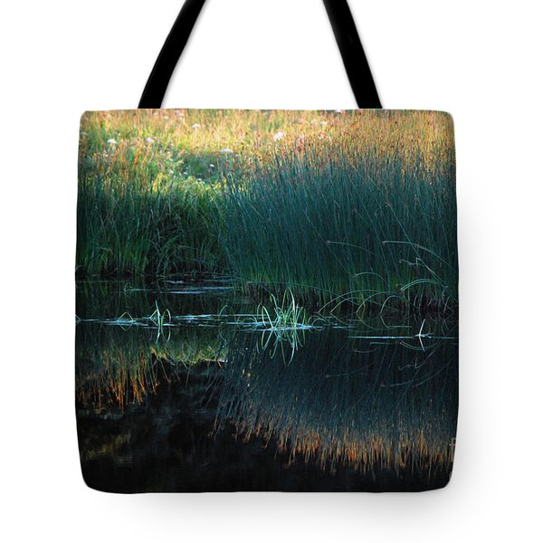 Sedges At Sunset Tote Bag