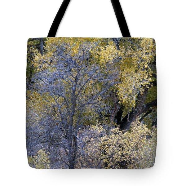 Sedona Fall Color Tote Bag