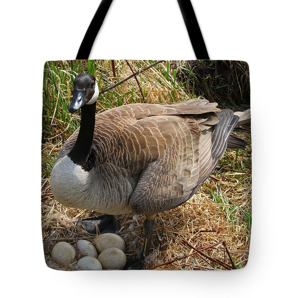 Tote Bag featuring the photograph See My Eggs by Elizabeth Winter