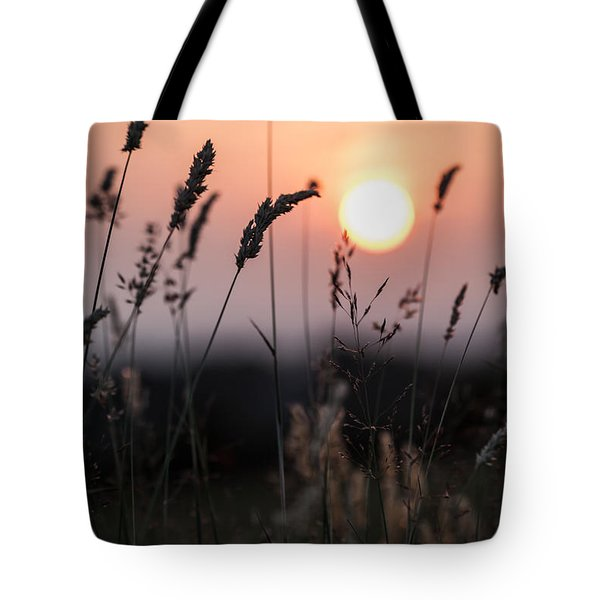 Seed Heads At Sunset Tote Bag
