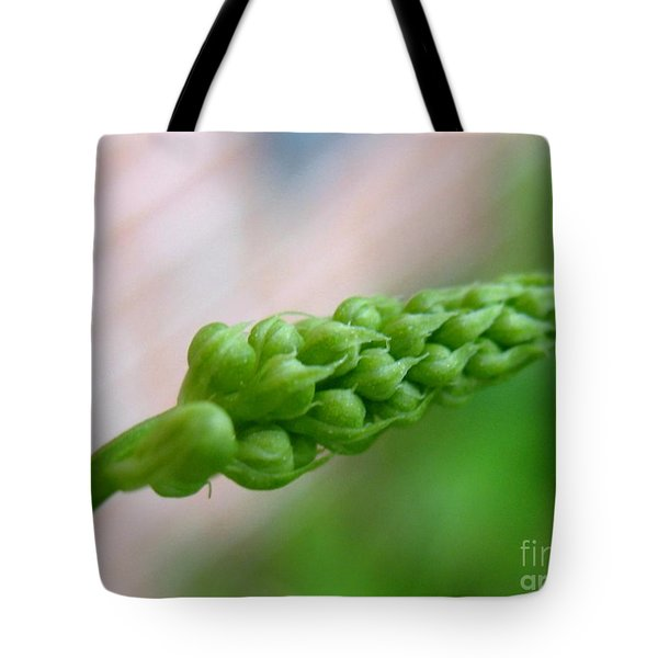 Seed Pod Tote Bag by Patti Whitten