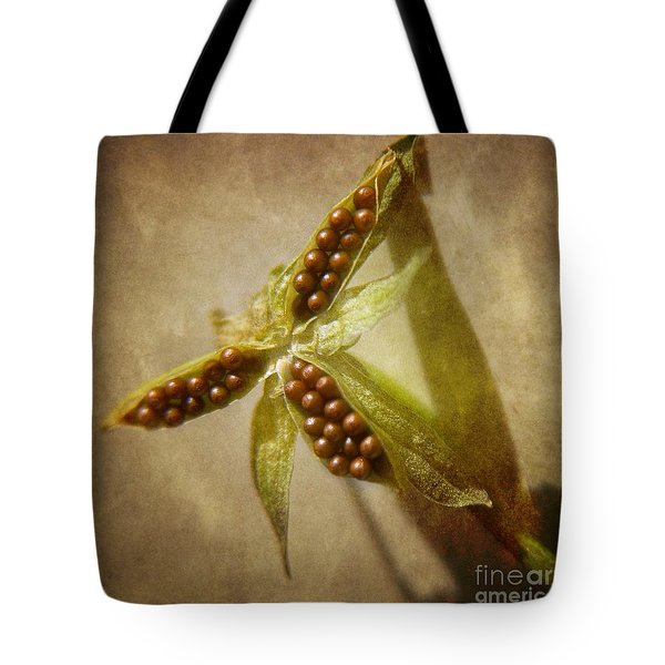 Seeds  Tote Bag by Peggy Hughes