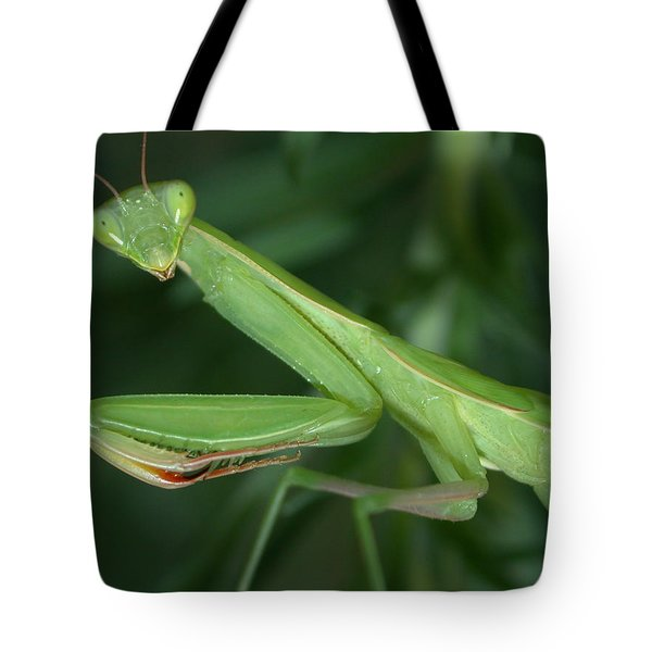 Seeing Green Tote Bag