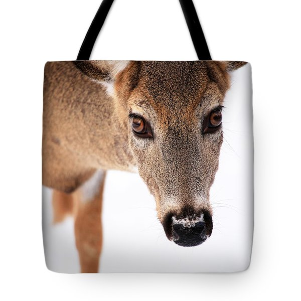Seeing Into The Eyes Tote Bag by Karol Livote