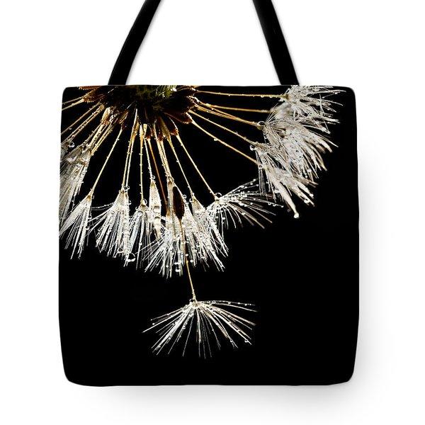 Seeking Freedom Tote Bag