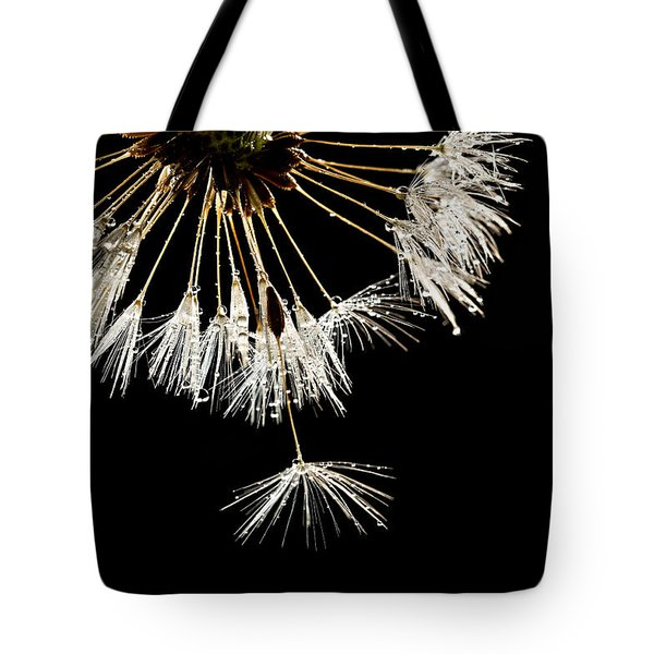 Seeking Freedom Tote Bag