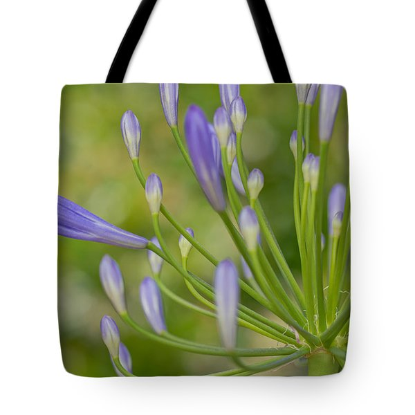 Seemingly Delicate Tote Bag by Heidi Smith