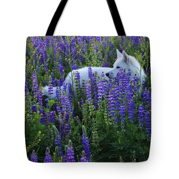 Sekani In Lupine Tote Bag by Sean Sarsfield