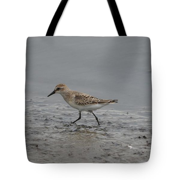 Tote Bag featuring the photograph Semipalmated Sandpiper by James Petersen