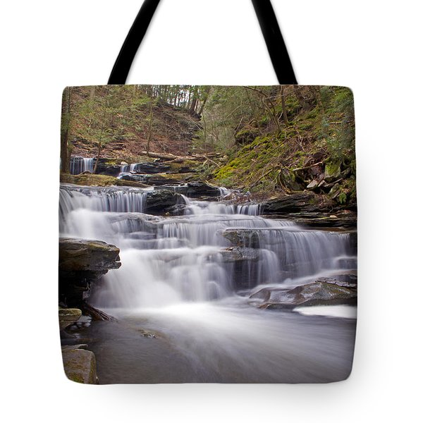 Seneca Falls In Spring Tote Bag by Shelly Gunderson
