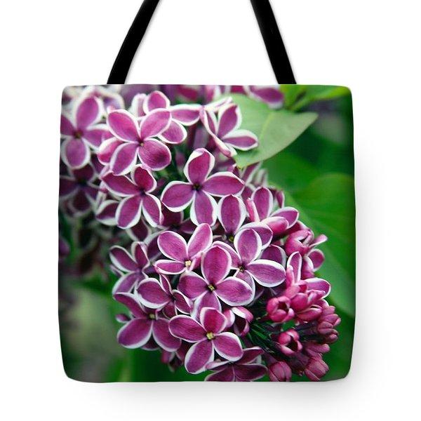 Sensation Lilac Tote Bag