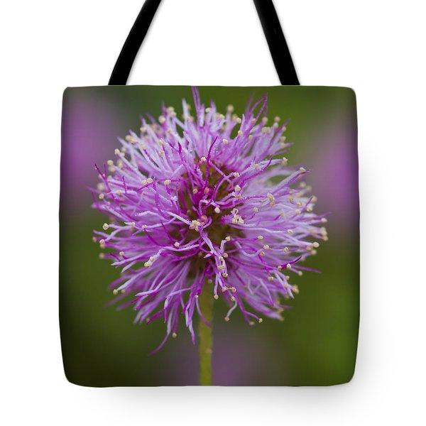 Sensitive Briar Flower Globe Tote Bag
