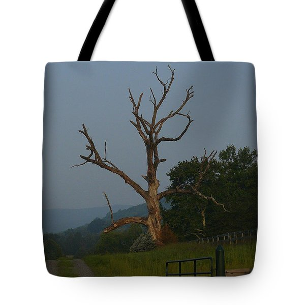 Tote Bag featuring the photograph Sentinel by Jane Ford