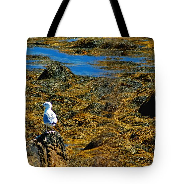 Tote Bag featuring the photograph Sentinel Seagull by Nancy De Flon