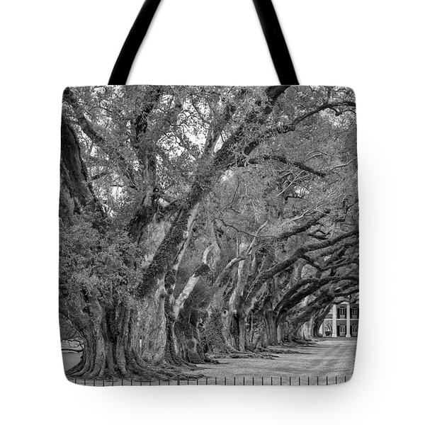 Sentinels Monochrome Tote Bag by Steve Harrington
