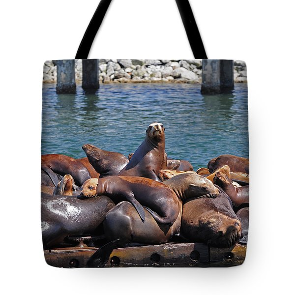 Sentry Sea Lion And Friends Tote Bag