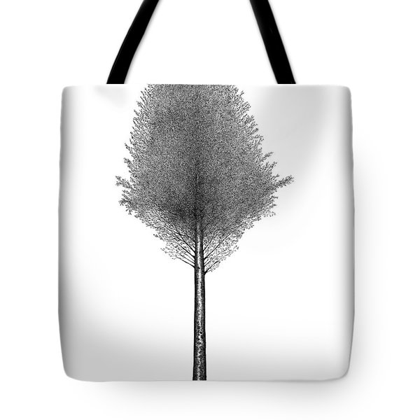 September '12 Tote Bag