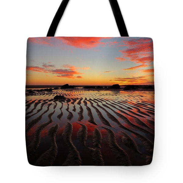 September Brilliance Tote Bag by Dianne Cowen