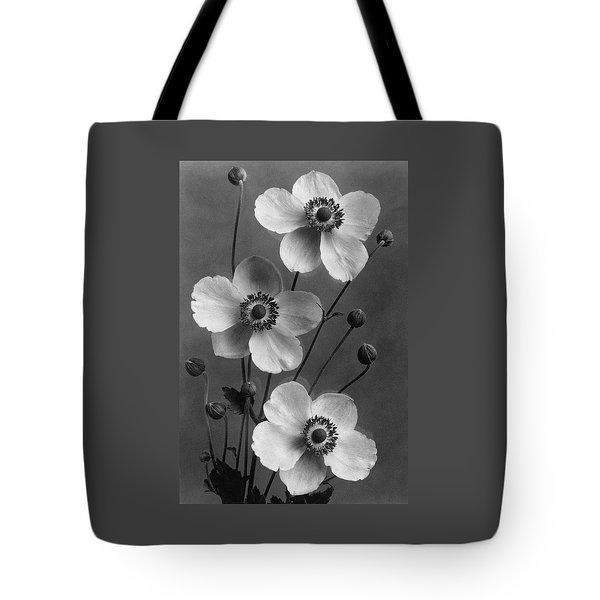 September Charm Anemones Tote Bag