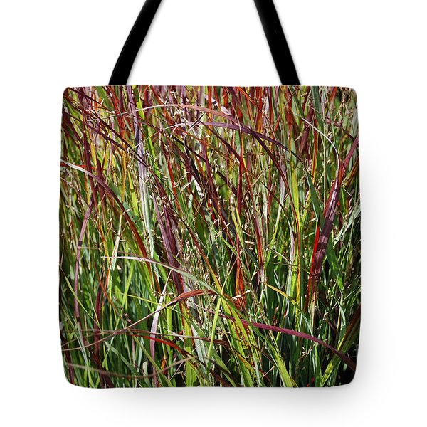 September Grasses By Jrr Tote Bag by First Star Art