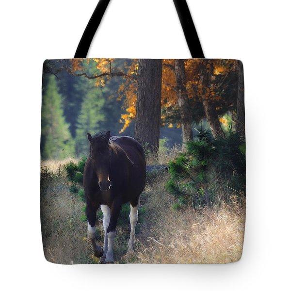 September Surrender Tote Bag