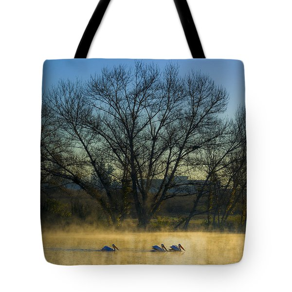 Sepulveda Dam At Dawn On New Year's Day 2015 Tote Bag by Joe Doherty