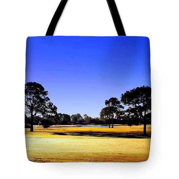 Tote Bag featuring the photograph Serendipity by Faith Williams