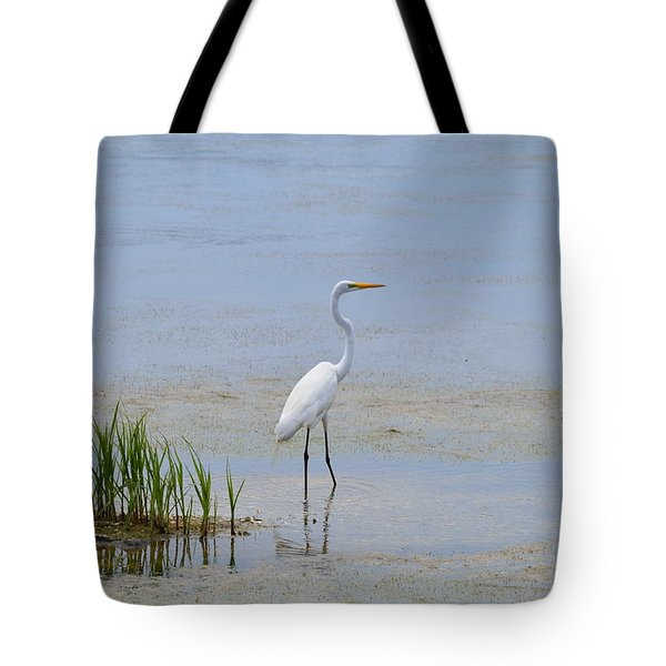 Tote Bag featuring the photograph Serene by Judith Morris