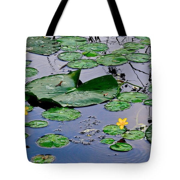 Serene To The Extreme Tote Bag by Frozen in Time Fine Art Photography