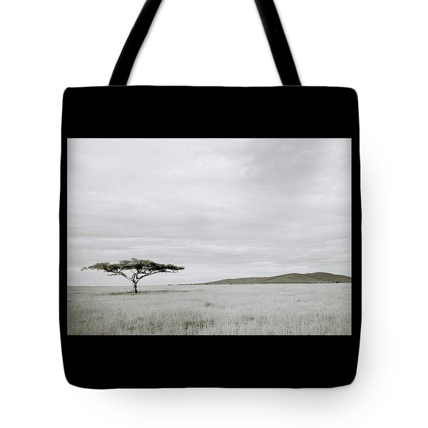 Serengeti Acacia Tree  Tote Bag by Shaun Higson