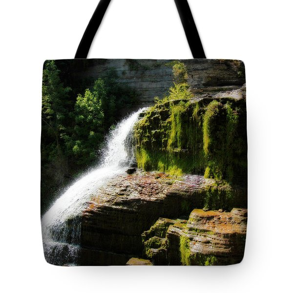 Tote Bag featuring the photograph Serenity by Trina  Ansel