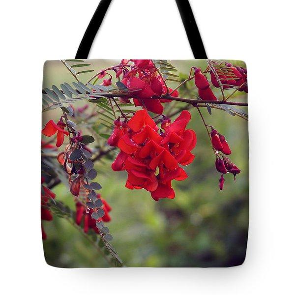 Sesbania Punicea Tote Bag by Kim Pate