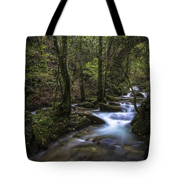 Tote Bag featuring the photograph Sesin Stream Near Caaveiro by Pablo Avanzini