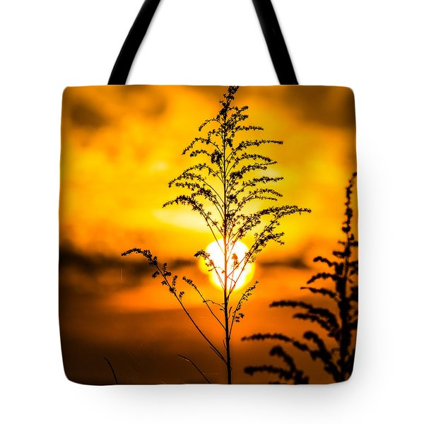 Setting Sun Tote Bag by Parker Cunningham