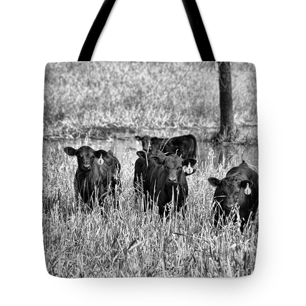 Eight Babies Tote Bag