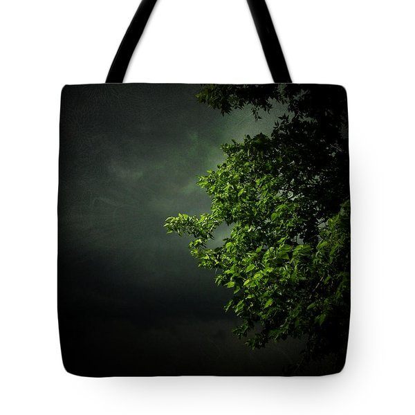 Severe Weather Tote Bag by Cynthia Lassiter