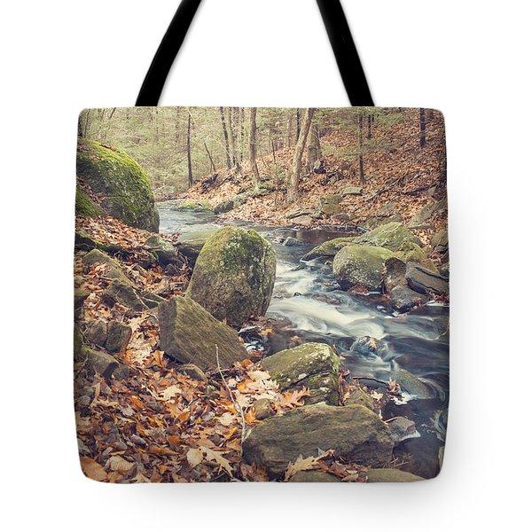 Shade Of November Tote Bag
