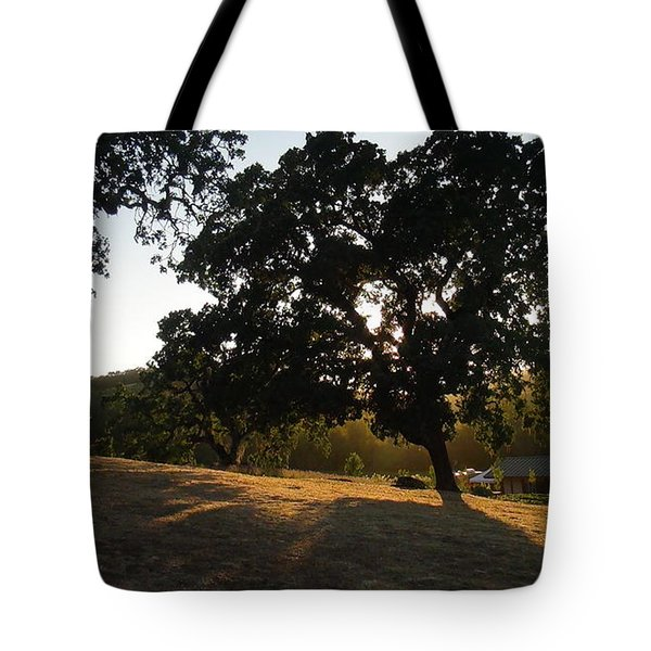 Tote Bag featuring the photograph Shade Tree  by Shawn Marlow