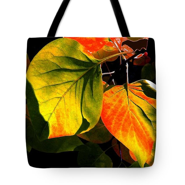 Shades And Shadows Tote Bag