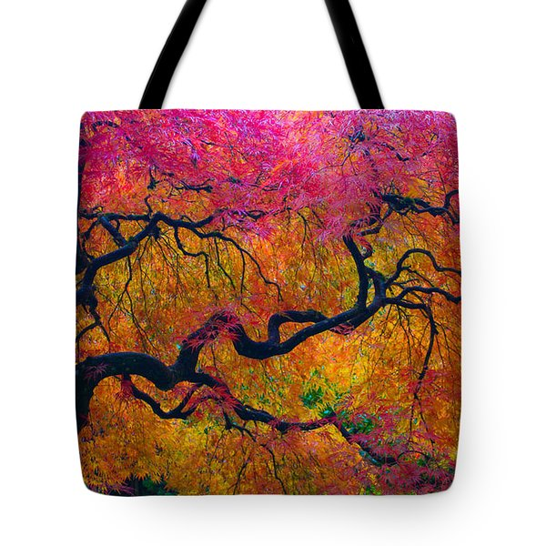 Shades Of Autumn Tote Bag by Patricia Babbitt