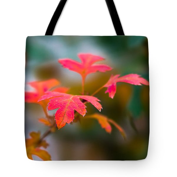 Shades Of Autumn - Red Leaves Tote Bag by Alexander Senin