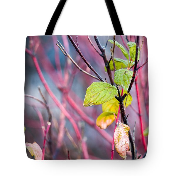 Shades Of Autumn - Reds And Greens Tote Bag by Alexander Senin