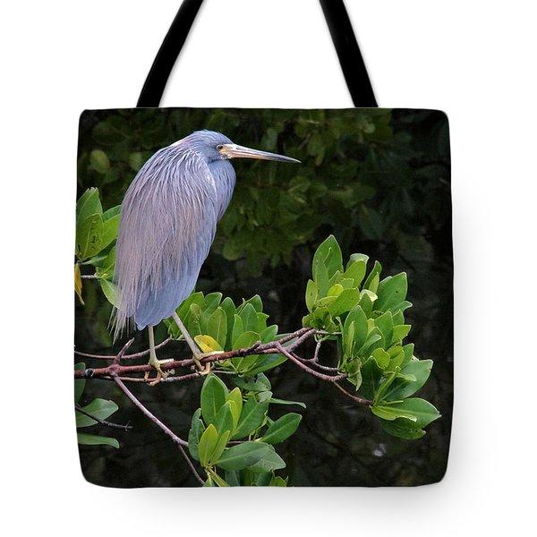 Shades Of Blue And Green Tote Bag