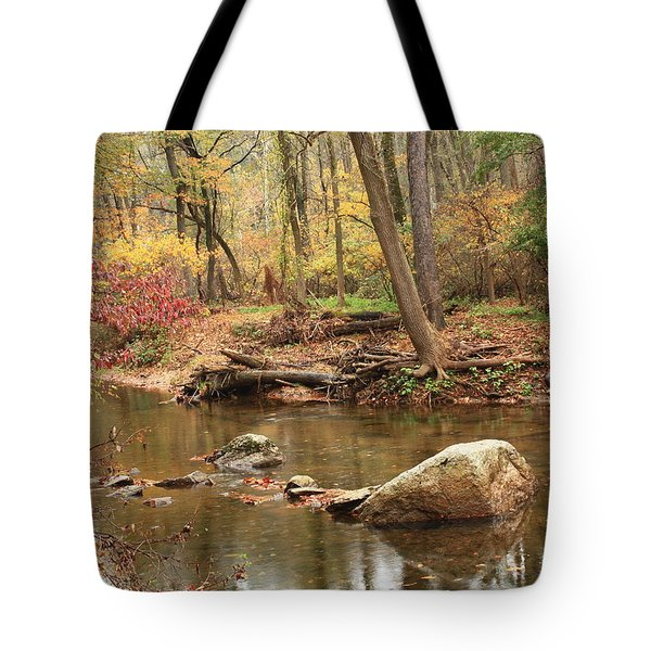 Tote Bag featuring the photograph Shades Of Fall In Ridley Park by Patrice Zinck